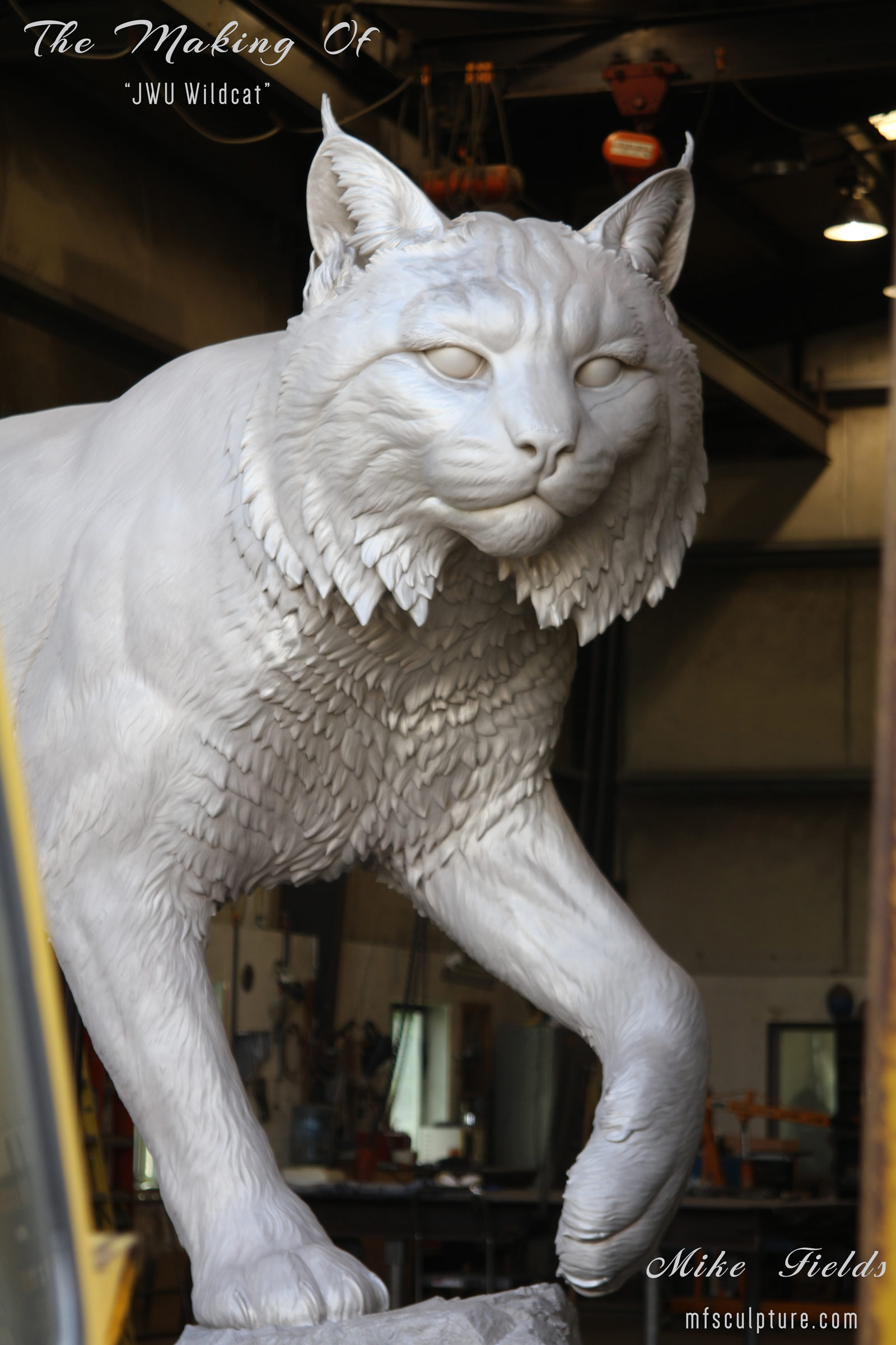 Mike-Fields-Making-Of-JWU-Wildcat