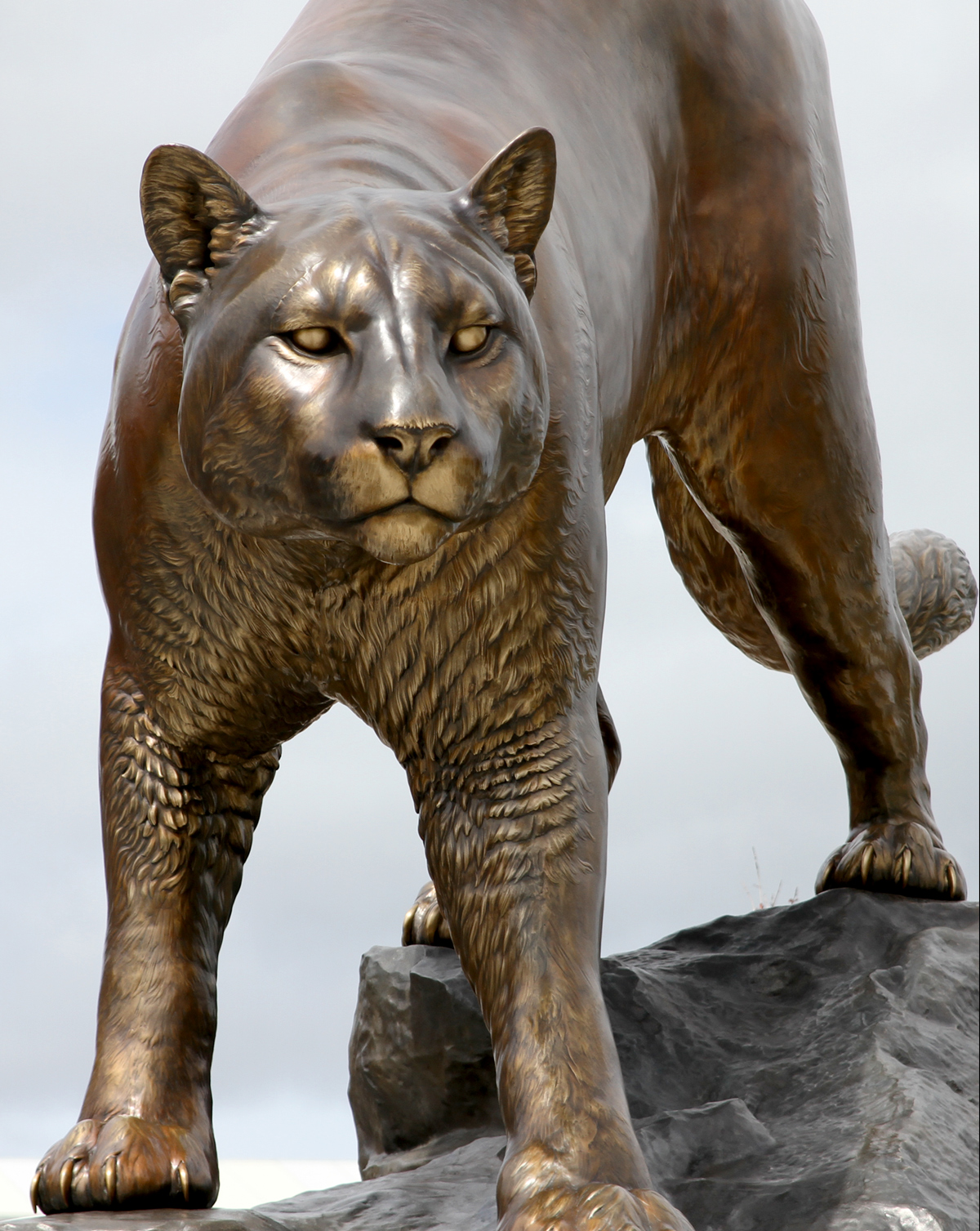 Washington-State-University-Cougar-Mascot-Monument
